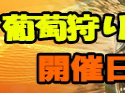 【10月ツーリング】葡萄狩りツーリング