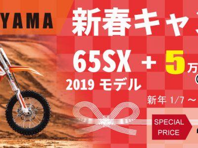 新春キャンペーン:65SX 2019新車【5万円オプション付!】